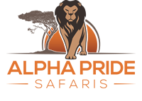 Alpha Pride Safaris